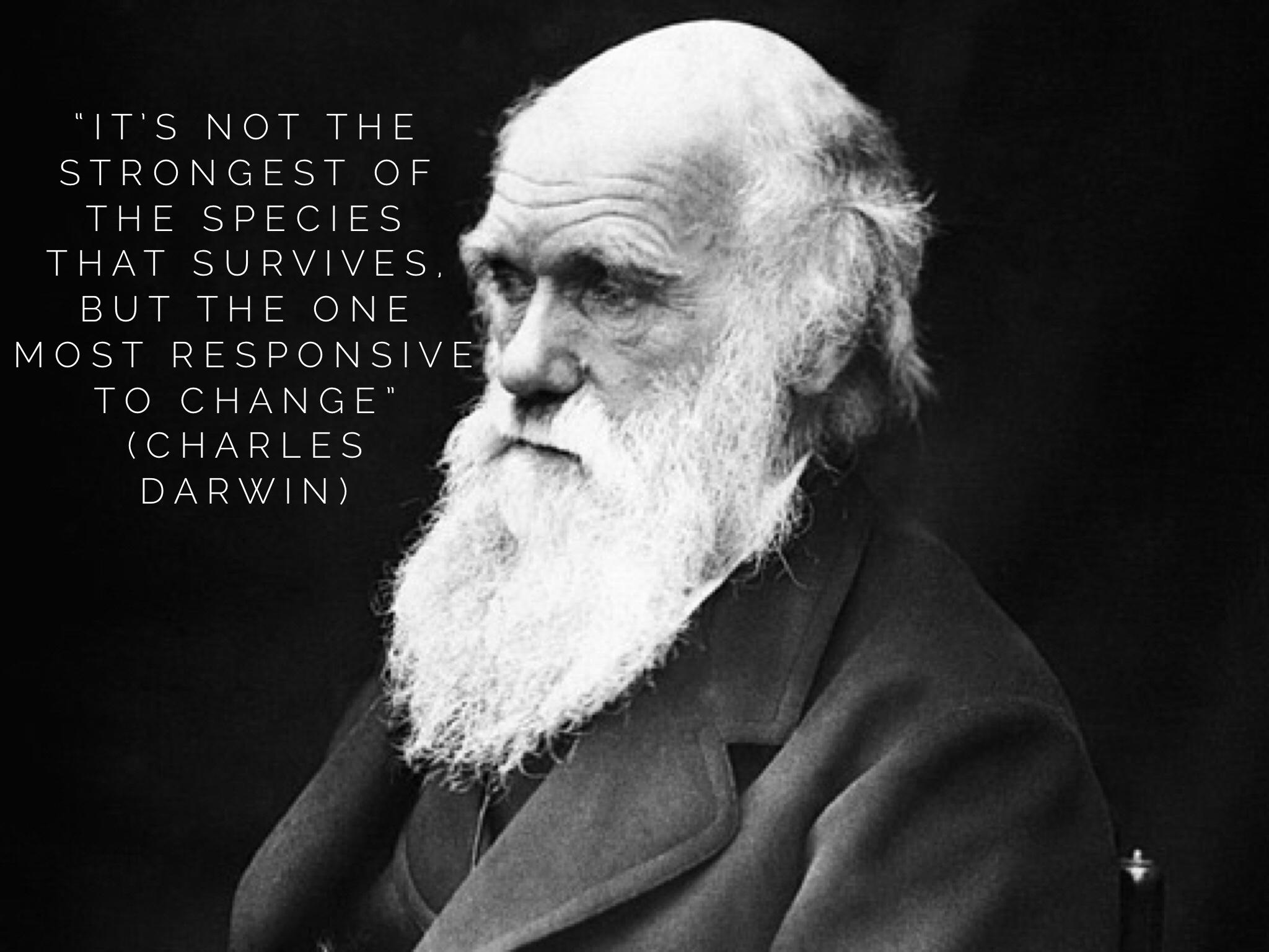 Change-ability Early Years Darwin